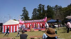 大原桜祭り